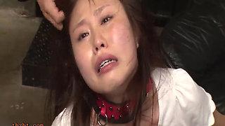 Hot Asian bdsm orgy